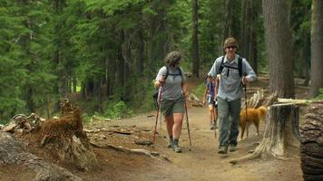 grupo de amigos caminando juntos video