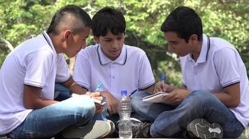estudiantes felices trabajando juntos video