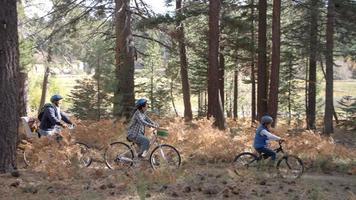 famiglia in bicicletta attraverso una foresta insieme, da sinistra a destra
