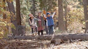Familia asiática de cinco disfrutando de un paseo juntos en un bosque