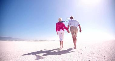 Rear view of an elderly retired couple walking together along the beach