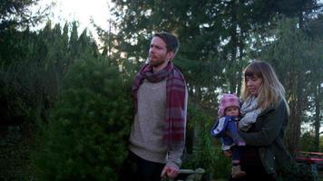 un joven lleva un árbol de navidad a través de la granja, caminando con su esposa y su bebé