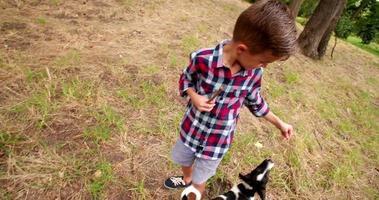 cachorro brincalhão brincando com um pedaço de pau que um garotinho está segurando