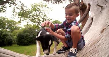 jongen en puppy hondje zittend op een boomtak in park