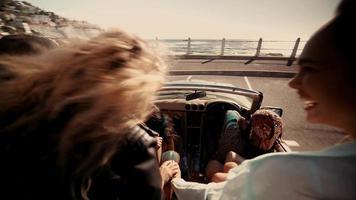 amigos hipster se abraçando em frente ao mar video