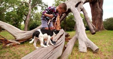 giocoso cane che gioca con il bastone che un ragazzino tiene