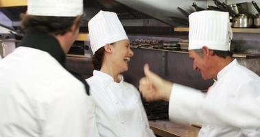 grupo de chefs torcendo e juntando as mãos video