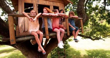 niños en una casa del árbol sonriendo juntos como amigos video