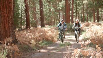 coppia sorridente in bicicletta attraverso una foresta insieme, vista frontale