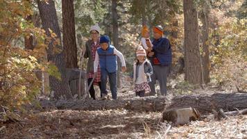 genitori con bambini che si godono insieme un'escursione in una foresta video