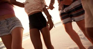 multietnico gruppo di amici che ballano insieme a un beachparty
