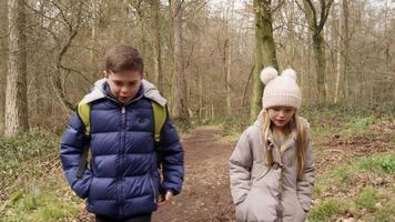 due bambini che camminano nei boschi verso la telecamera palmare di rilevamento, ripresa su r3d