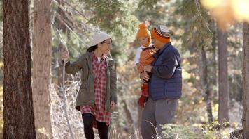 schwangere Frau, Ehemann und kleine Tochter wandern in einem Wald