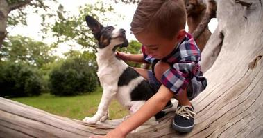 Little boy hugging and stroking his puppy dog in park video