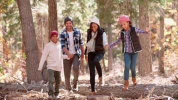 família na floresta pisar em árvore caída, vista frontal, close-up video