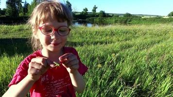 menina segurando um gafanhoto nos braços. video