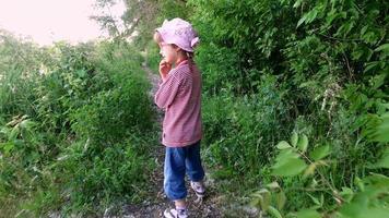 ragazza del bambino che cammina su uno stretto sentiero sulla riva dello stagno. video