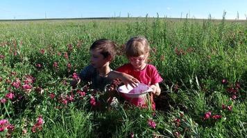 niño adolescente y niña jugando en un prado. hermano y hermana sentados en la hierba.