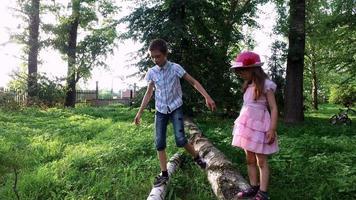 jugendlich Jungen und Mädchen, die auf einem Baumstamm gehen. Bruder und Schwester helfen sich gegenseitig beim Gehen auf dem Schwebebalken. video