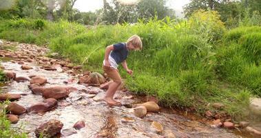 niño aventurero explorando el mundo y el río. video