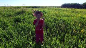 menina caminha num prado. a garota coleciona flores silvestres.