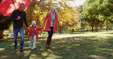 Familie geht Hand in Hand im Freien video