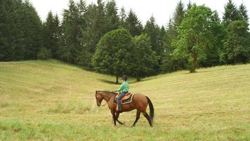 Young girl riding a horse in a meadow