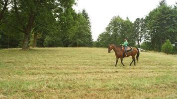 junges Mädchen, das ein Pferd in einer Wiese reitet