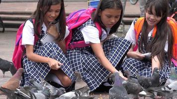 ragazze della scuola che alimentano i piccioni
