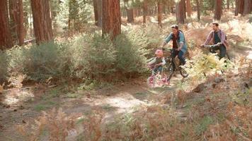 orgogliosi genitori maschi e giovane figlia passano in bicicletta nella foresta
