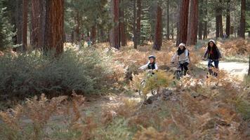 coppia lesbica in bicicletta in una foresta con la loro figlia