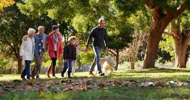 Familie mit Hund im Freien video