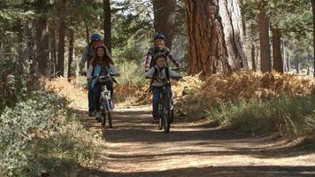 famiglia in sella a mountain bike attraverso un ciclo di foresta passato video
