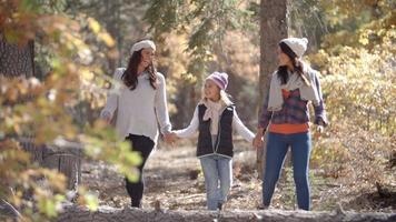 weibliche Eltern gehen in einem Wald Händchen haltend mit Tochter video