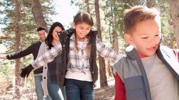 família hispânica feliz se equilibrando em uma árvore caída em uma floresta video