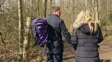 familia de cuatro y perro mascota caminando por el bosque, de mano, filmado en r3d video