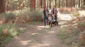 Male parents pushing stroller with two kids through a forest video