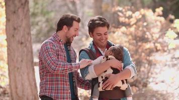 genitori maschi che camminano nella foresta con il bambino in fionda, mezzo busto video
