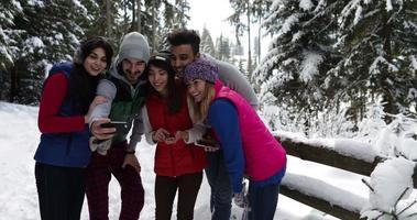 Gruppe von Menschen Winter Schnee Wald Spaziergang glückliche Freunde Spaß im schneebedeckten Park video