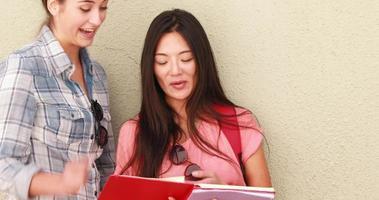 amigos hipster checando caderno