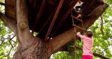 niños subiendo una escalera de cuerda a la casa del árbol video