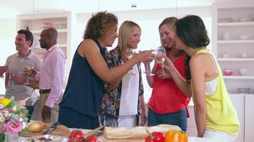 grupo de amigos maduros curtindo um jantar filmado em r3d video