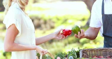 fazendeiro sorridente discutindo com uma cliente loira
