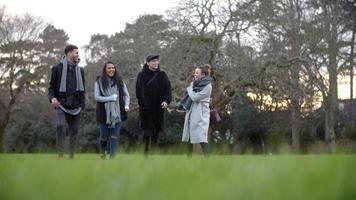 Gruppe junger Freunde, die im Winter durch Park gehen