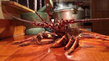 esperando lo inevitable; cangrejos de río espera por olla de agua hirviendo