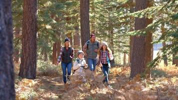 Panning shot of family running past on a forest trail