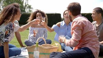 junge erwachsene Freunde bei einem Picknick trinken und reden