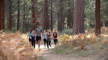 Group of young adult friends run past camera in a forest