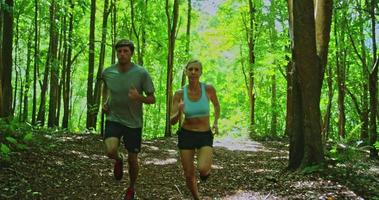 Joggen im Wald video