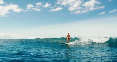 hermosa chica surfeando olas del océano azul video